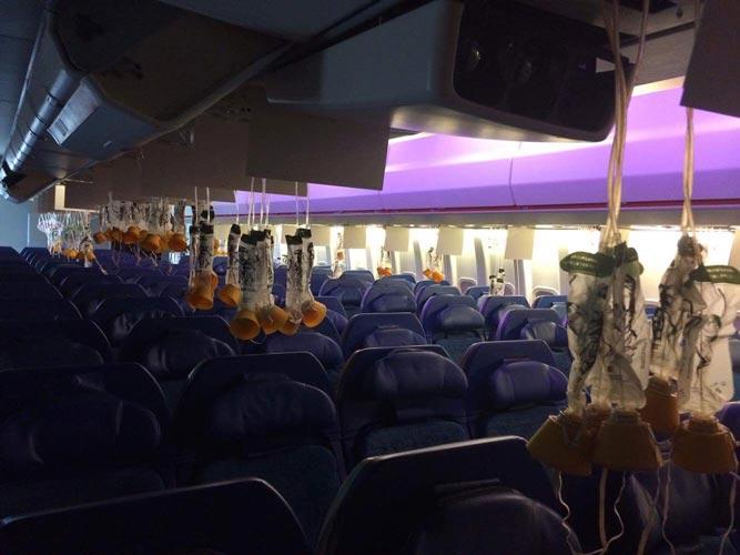 New Dunsfold Boeing 747 Economy interior